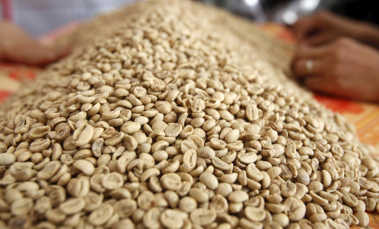 قهوه ویتنام عربیکا