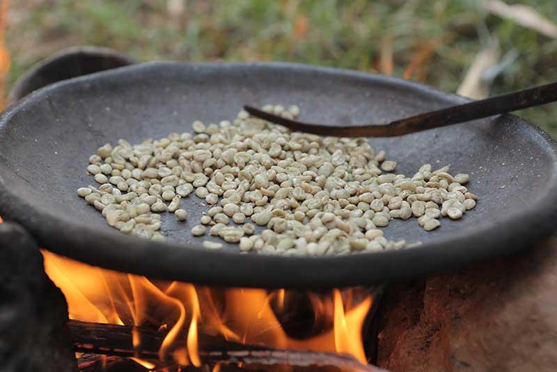 فروش عمده انواع قهوه عربیکا اتیوپی