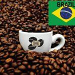 قهوه برزیل سانتوس
