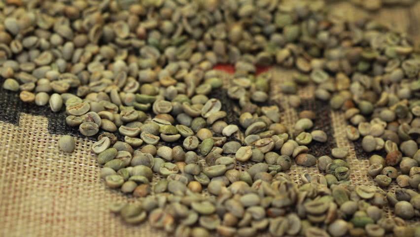 فروش قهوه سبز کنیا