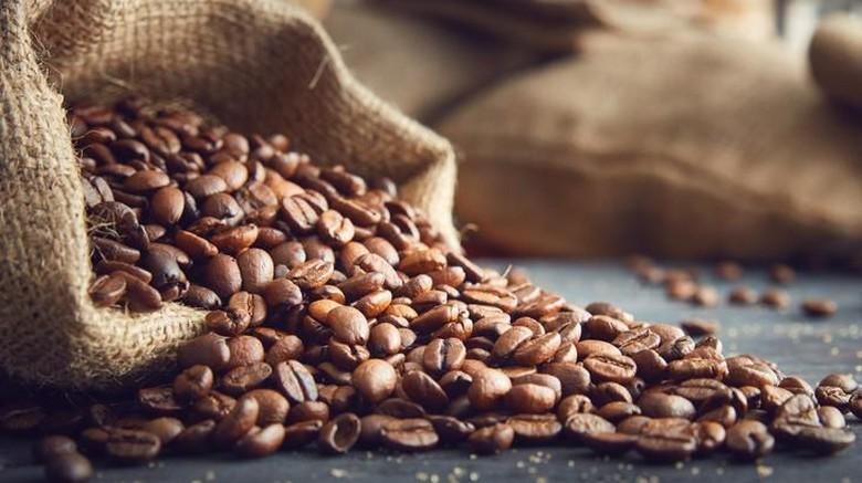 فروش عمده قهوه برزیل