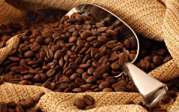 فروشنده قهوه درجه یک صادراتی