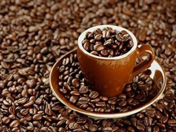 بزرگترین مرکز توزیع  قهوه پی بی در ایران