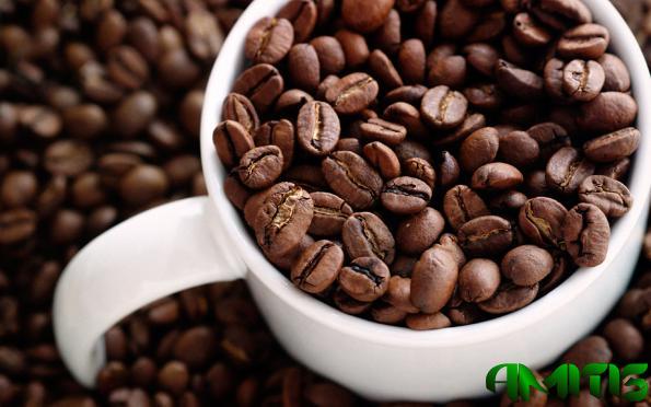 قیمت عمده قهوه پی بی صادراتی هند