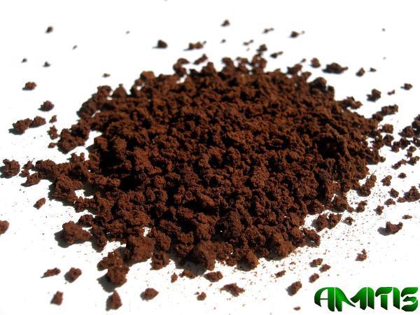 پخش عمده دانه قهوه ویتنام دارک