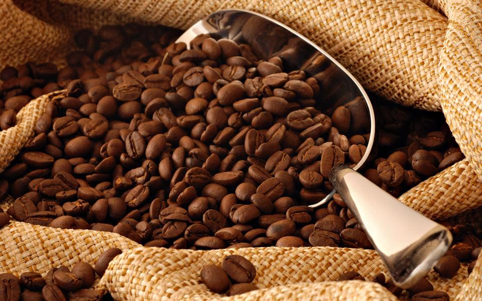 فروشگاه تخصصی قهوه
