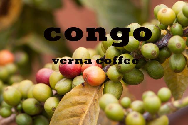 قهوه کنگو روبوستا